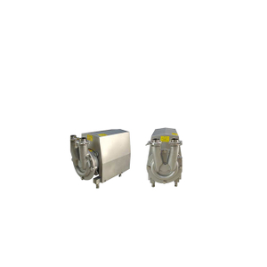 Sanitary Stainless Steel Abb Motor Water CIP Pump